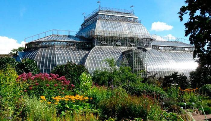 Ботанический сад Петра Великого (оранжерейный комплекс)